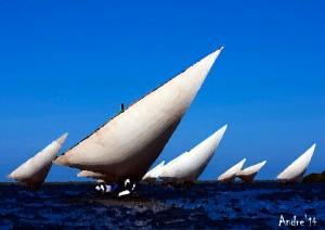 sailboatslamu